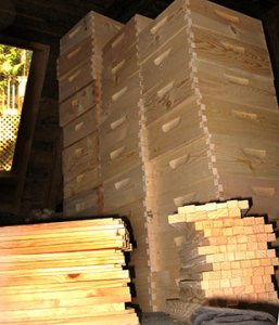 Bee Boxes To The Ceiling