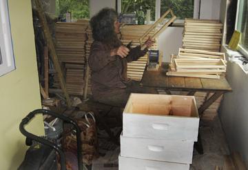 Wiring bee hives frames at Brookfield Farm Bees And Honey, Maple Falls, Washington